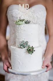 Pretty White Cake With Succulents