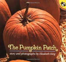 The Runaway Pumpkin Pdf by Pumpkin Books For Kids The Measured Mom