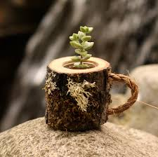 Coworker Gift Succulent Pots Rustic Coffee Mug Plant Holder