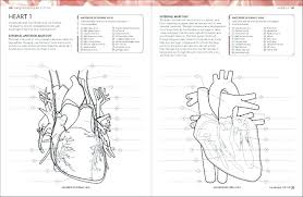 Anatomy Coloring Book Kapit As Well Take A Look Inside The