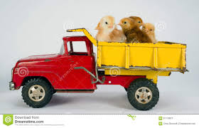Baby Chicks Newborn Farm Chickens Ride Dump Truck Stock Image ... Toys Hobbies Diecast Toy Vehicles Find State Products Pink Pig In Dump Truck Sculpture Joy Ride Rudkin Studio 1941 Em Dirt Diggers 2in1 Little Tikes John Deere Activity Tractor On Kids Toddler Farm Gift Sit R Us Pulls Toohot From Shelves After It Burst Into Cat Job Site Machines Ls Remote Control Vehicle Dumptruck Toysrus 1090 Keystone Ride Em Dump Truck Green Australia Recycled Plastic Earth Nest Tonka Mighty For Unboxing Review And Riding Also Big Trucks Youtube Or 40 Ton