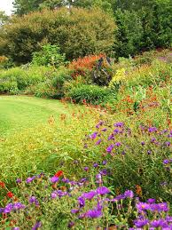 Flowers For Flower Beds by To Do List For Fall Gardening Diy
