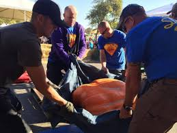 Largest Pumpkin Ever Weight by 1 806 Pounder Takes Grand Prize At Elk Grove Giant Pumpkin