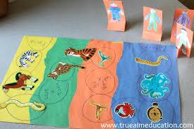 Animal Activities For Kids Diy Habitat Board Game