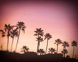 Palm Tree Print Or Canvas Wrap California Beach Palms Trees Photo Sunset Photography Pink Black Wall