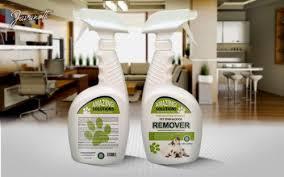 Dog Urine Odor Hardwood Floors by Best Pet Stain Remover And Odor Eliminator Carpet For Dog