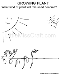 Crafts At Planting Seeds Coloring Pages