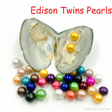 100 Where Is Dhgate Located 2019 Wholesale DIY 9 12 Mm Round Edison Twins Pearl Oyster High