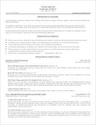 Real Estate Investment Business Plan Sample In Word Executive Free Template Summary For Budget