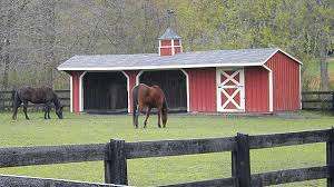 Shed Row Barns For Horses by Horse Barns Eberly Barnseberly Barns