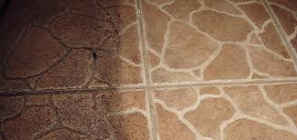 using your steam cleaner on ceramic floors