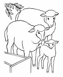 Sheep Family Coloring Pages