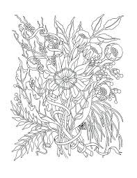California Poppy Coloring Page Pages Drawing Branch And Cat Na