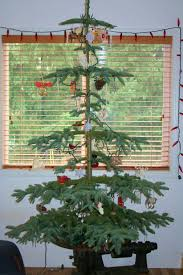 Colorado Springs Christmas Tree Permit 2014 by November 2008 Jarbidge To The Oregon Trail