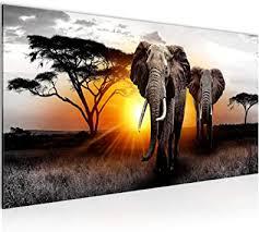 wandbilder afrika elefant modern vlies leinwand wohnzimmer