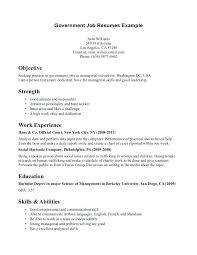 Job Resume Template Sample For Application