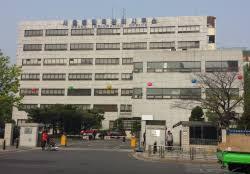 sur place le bureau d immigration une fausse coréenne en vraie