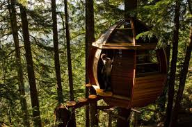 100 Whistler Tree House He Had A Treetop Home In And Now Hes Giving Away