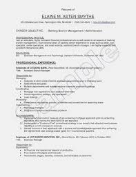 Operations Manager Resumeective Free Fleet Of Sales Resume ... 9 Resume Examples For Regional Sales Manager Collection Sample For Experienced And Marketing Resume Objective Cover Letter Retail Lovely How To Spin Your A Career Change The Muse Souvirsenfancexyz Pharmaceutical Atclgrain Good Of New Salesman Example Free Awesome Objectives Sales Cat Essay Writer Assembly Line Worker Netteforda Job Avery Template 8386