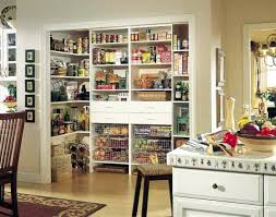 Kitchen Cabinet Storage Containers Pantry Shelves For Kitchen