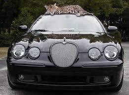 2005 Jaguar S TYPE R Overview CarGurus