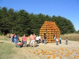 Asbury Pumpkin Patch Corpus Christi by Find Pick Your Own Pumpkin Patches Hayrides Corn Mazes And