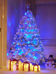 Christmas Trees Types Uk by Photos Of Your Christmas Trees Daily Post