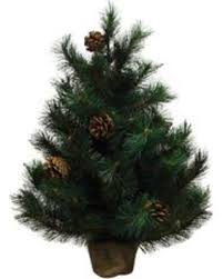 Northlight 2 Ft Oregon Pine Artificial Christmas Tree With Atg1095510
