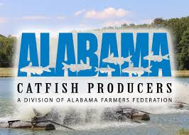 Alabamacatfish.org Bama Beef Blog October 2015 Desnation 16 Andalusia Al 2134616 Part B Our Rv A Brilliantly And Lovingly Stored Old Tobacco Barn 40acre Food Worth The Trip To The Old Barn In Goshen Restaurant Reviews Best 25 Chester County Ideas On Pinterest West Chester Arethusa Farm Litchfield Ct Dairy Cafe 89 Best Dream Images Horses 77 Building Wood Architecture Birmingham Lane Chapman Alabamacatfishorg 6364792859237529sartre5jpg