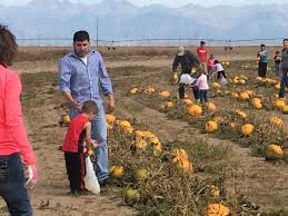 Colorado Pumpkin Patch Farm Camp by Pumpkin Patch Rio Grande Watershed Conservation And Education