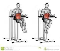 Captains Chair Leg Raise Bodybuilding by 100 Roman Chair Leg Raise Oblique Core Exercises