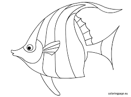 Angelfish Coloring Pages