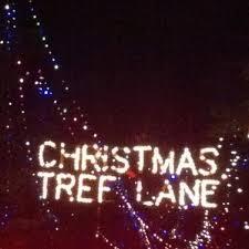 Christmas Tree Lane Fresno Ca History by Christmas Tree Lane