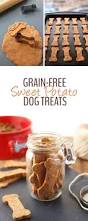 Pumpkin Puree For Dog Constipation by 669 Best Images About Dog Food U0026 Treats Homemade On Pinterest