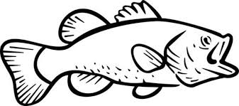 Bass Fish Coloring Pages Printable
