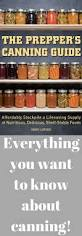 Pressure Canning Pumpkin Puree by Best 25 Canning Vegetables Ideas On Pinterest Canning Canning