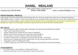Professional Statement Resumes Example Career Objective Cv