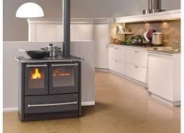 achetez cuisinière à bois occasion annonce vente à bourg en