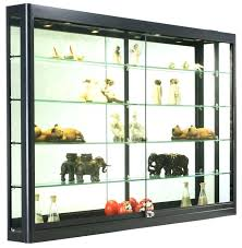 Wall Mountable Display Cabinets Mounted Shelves Glass Case Lockable Cabinet