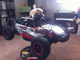 1/5 Scale RC, 1/36 Scale Puppy! | My Hobby!! | Pinterest | Rc Cars ... Losi 15 5ivet 4wd Sct Running Rc Truck Video Youtube Kevs Bench Custom 15scale Trophy Car Action Monster Xl Scale Rtr Gas Black Los05009t1 Cheap Hpi 1 5 Rc Cars Find Deals On New Bright Rc Scale Radio Control Polaris Rzr Atv Red King Motor Electric Vehicles Factory Made Hotsale 30n Thirty Degrees North Gas Power Adventures Power Pulling Weight Sled Radio Control Imexfs Racing 15th 30cc Powered 24ghz Late Model Tech Forums Project Traxxas Summit Lt Cversion Truck Stop Radiocontrolled Car Wikipedia