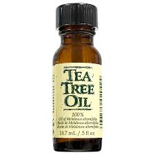 Gena Laboratories NailCare Treatment Tea Tree Oil 25 Off Frankly Eco Coupons Promo Discount Codes Wethriftcom Best Natural Essential Oils More Plant Guru Face Cleanser Organic Just Call Me Melaleuca Alternifolia Tea Tree Mega Blog Post My Memphis Mommy Mar 11 2019 Spring Valley Skin Health Oil 2 Oz Pop Shop America Handmade Beauty Box Coupon June 2018 Msa Dermalogica Medibac Clearing Adult Acne Treatment Kit No Restore Water Flow Bridge In Miami Everglades Therapy 100 Pure Prediluted Rollon Aromatherapy Bleu Lavande Set 4x15ml