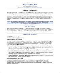 Page Program Management Resume Examples