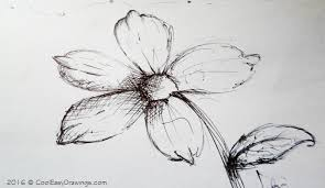 Drawing Of A Flower In Pen And Ink Art