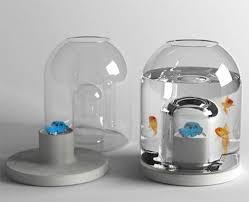aquarium poisson prix bocal poisson prix le pour aquarium vrac it