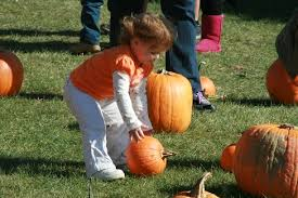 Pumpkin Patch Toledo Ohio by Pumpkin Patch Express Train Rides Ohio Station Outlets