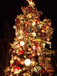Alameda Christmas Tree Lane by Weeviewed Local Curated Favorites For All Things Kid Family