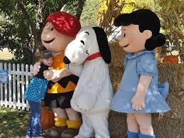 Best Pumpkin Patch In San Bernardino County by It U0027s The Great Pumpkin Patch Charlie Brown Peanuts Gang To Ride