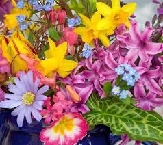 Beautiful Flower Wallpaper Desktop Image Animated Mobile Phone Wallpapers Flowers