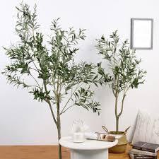 finden sie hohe qualität topfpflanzen olivenbaum hersteller