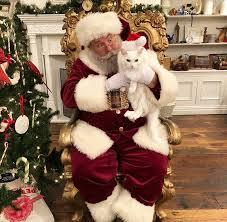 Christmas Tree Shop Deptford Nj Application by Petsmart Facebook